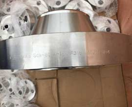 316 Stainless Steel Pipe Flanges