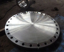 UNS S32550 Blind Flanges